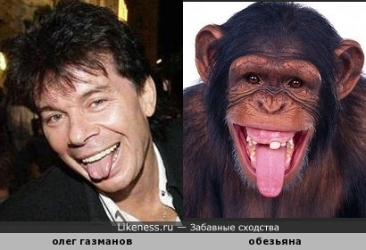 есть что-то в Газманове обезьянье