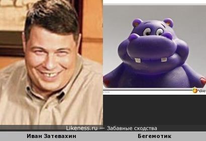 Иван Затевахин похож на бегемотика