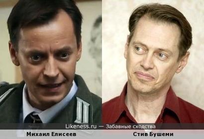 Михаил Елисеев похож на Стива Бушеми