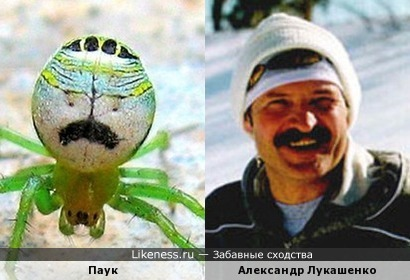 Поклонник Александра Григорьевича )