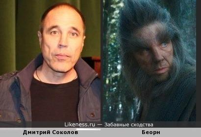 Дмитрий Соколов (Уральские пельмени) похож на Беорна (Хоббит. Пустошь Смауга)