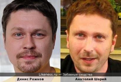 Анатолий Шарий похож на Дениса Рожкова