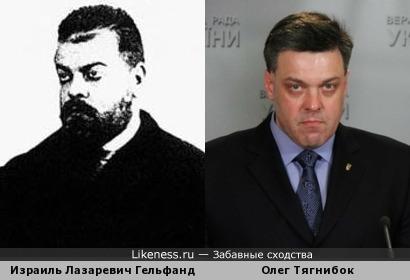 Израиль Гельфанд похож на Олега Тягнибока