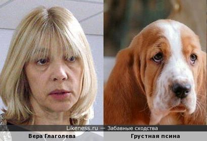 Вера Глаголева и собака с грустной мордой