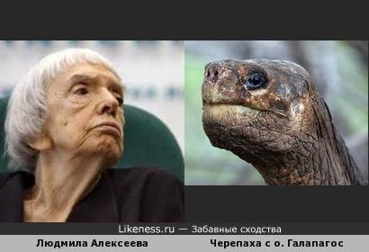 Людмила Алексеева, женщина неприятная во всех отношениях, похожа на галапагосскую черепаху