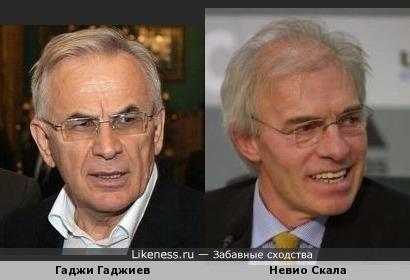 Гаджи Гаджиев похож на Невио Скалу