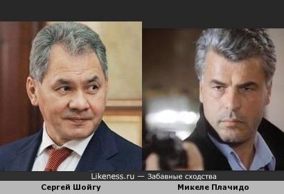 Сергей Шойгу похож на Микеле Плачидо