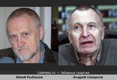 Правозащитник Юлий Рыбаков похож на Кинорежиссёра Андрея Смирнова