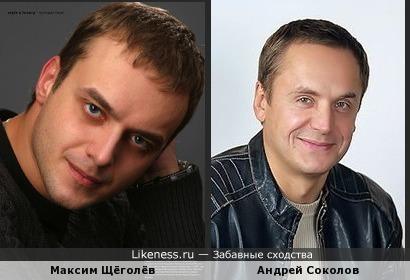 Максим Щёголёв напомнил Андрея Соколова