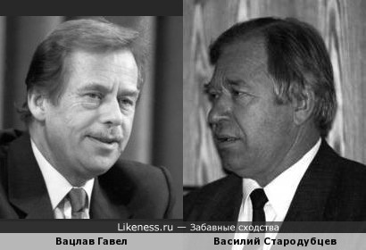 Вацлав Гавел похож на Василия Стародубцева