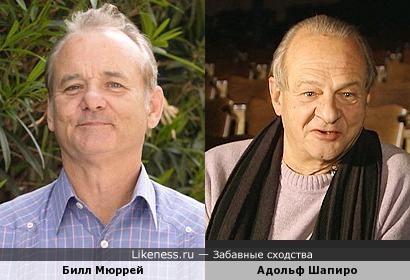 Билл Мюррей похож на Адольфа Шапиро