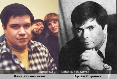 Илья Калинников похож на Артёма Боровика