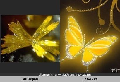 Этот жёлтый минерал напоминает Бабочку из Страз Сваровски