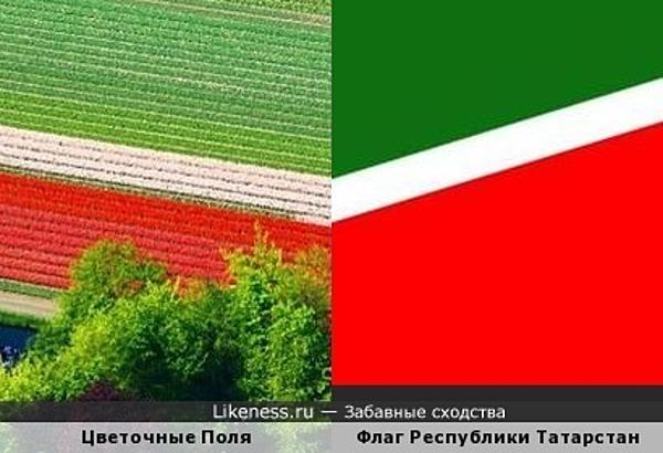 Цветочные зигзаги татарской удачи...
