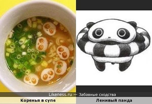 Коренья в супе напоминают ленивого панду