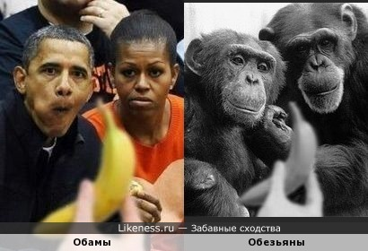 Banana to Obama...