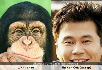 Актер Ян Хен Сок похож на обезьяну.