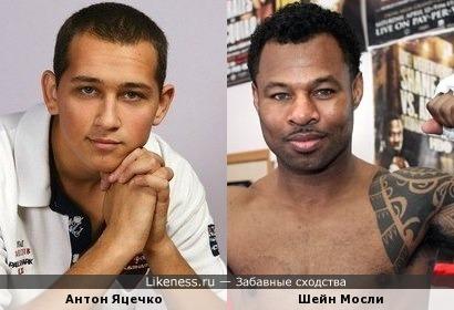 Антон похож на Шейна Мосли, несмотря на то что они разных расс
