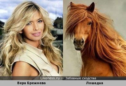 Вера Брежнева похожа на эту лошадку