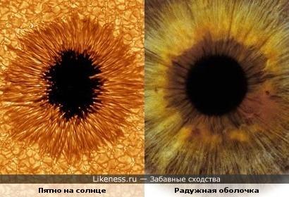 Пятно на солнце похоже на радужную оболочку глаза