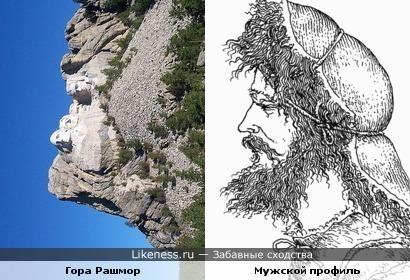 Мемориал Гора Рашмор под другим углом похожа на мужской профиль