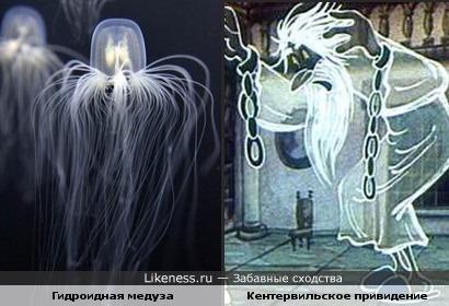 Медуза похожа на Кентервильское привидение