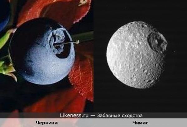 Черника и один из спутников Сатурна похожи