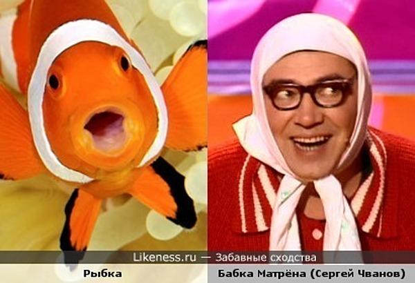 Рыбка - Бабка