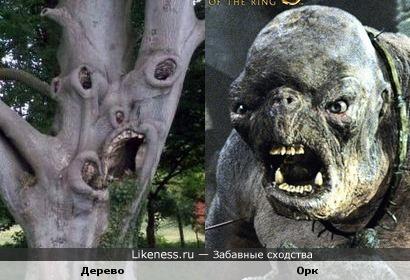 """Это дерево напоминает Орка из """"Властелина колец"""""""