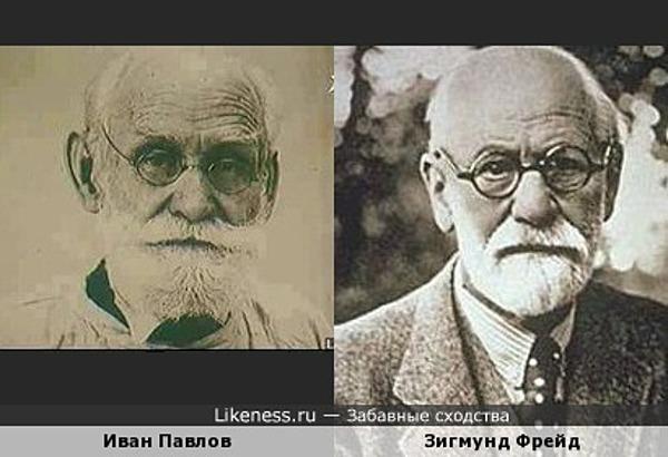Иван Павлов на этом фото напомнил Зигмунда Фрейда