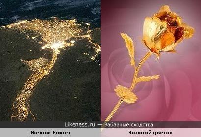 На снимке NASA, сделанном с Международной космической станции, ночной Египет похож на золотой цветок