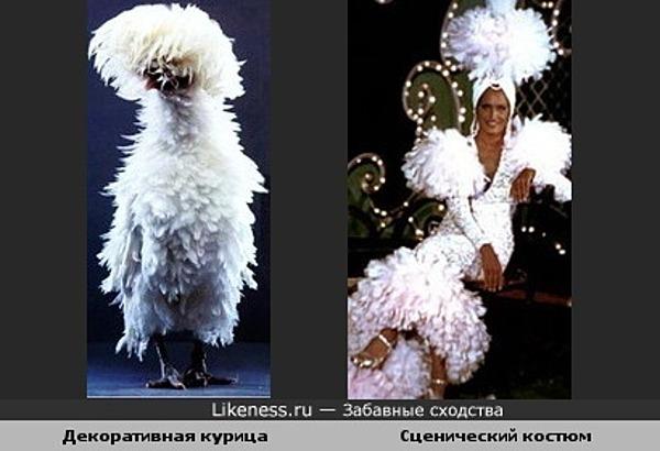 Декоративная курица похожа на сценический костюм