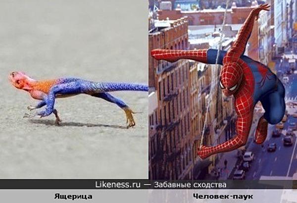 Ящерица и Человек-паук