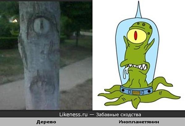 """Дерево похоже на инопланетянина из """"Симпсонов"""""""