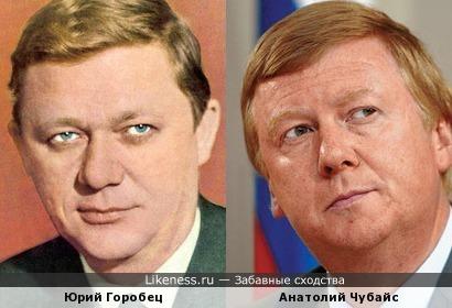 Юрий Горобец и Анатолий Чубайс