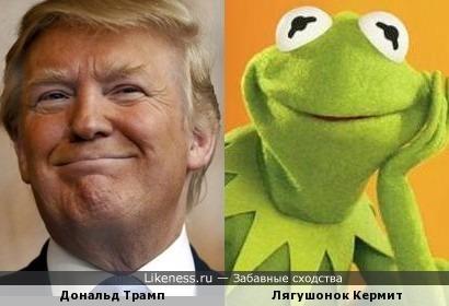 Дональд Трамп напомнил Лягушонка Кермита