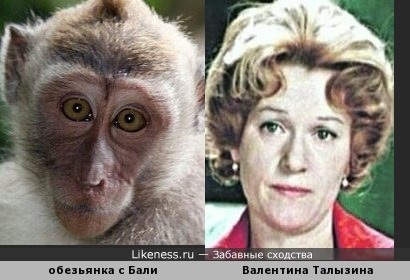 милая обезьянка с острова Бали немного напомнила великую актрису Валентину Талызину (в молодости )