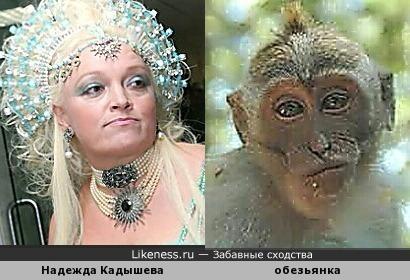 ай дер дер дера)) все мы -забавные милые и обезьянистые создания