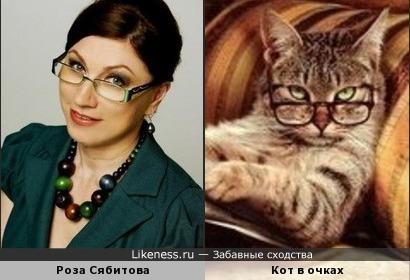 телеведущая Роза Сябитова похожа на читающего котика в очках