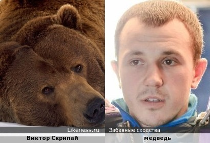 Витя Скрипай похож на медведя из берлоги