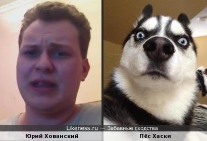 Юрий Хованский похож на пса Хаски