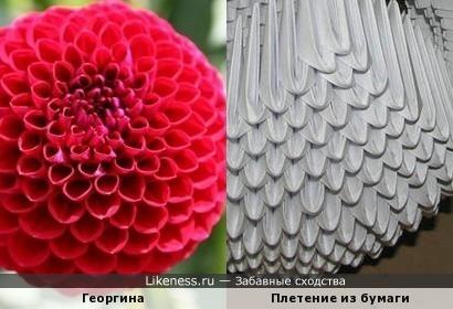 Плетение из бумаги напоминает георгину