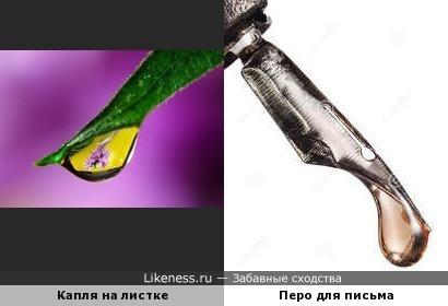 Природа находит отражение в предметах...