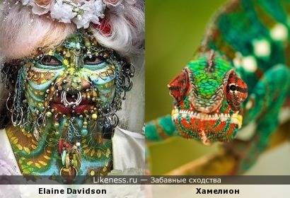 Elaine Davidson-Хамелион