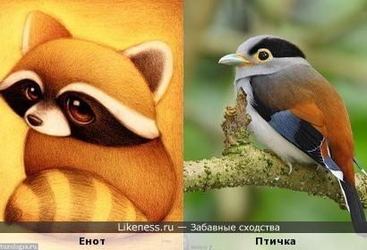 Мультяшка и пташка