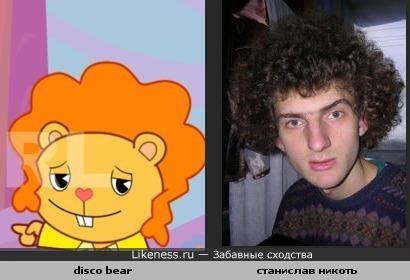 disco bear похож кучеряшку