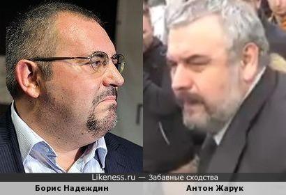 Петербургский адвокат Антон Жарук напомнил политика Бориса Надеждина