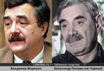 Политолог Владимир Жарихин напомнил Александра Панкратова-Черного