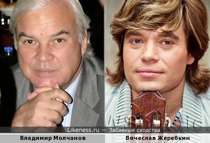 """Телеведущий Владимир Молчанов и """"нанаец"""
