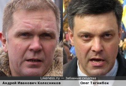 Журналист Андрей И. Колесников напомнил Олега Тягнибока